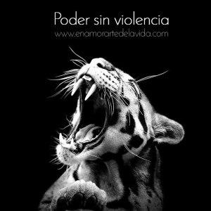 Poder-sin-violencia