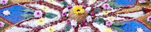 bunner-flores.jpg